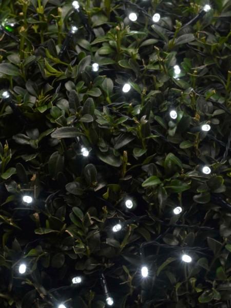 100 White LED Light String